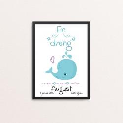Plakat: Fødselstavle, Hval,...