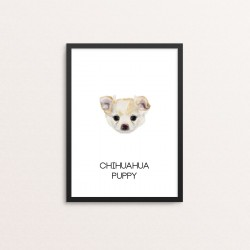 Plakat: Chihuahua, Hvalp lys