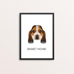 Plakat: Basset Hound