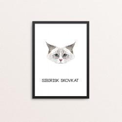Plakat: Sibirisk Skovkat