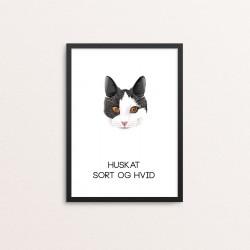 Plakat: Huskat, sort og hvid