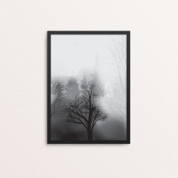 Plakat: Fog In The Forest