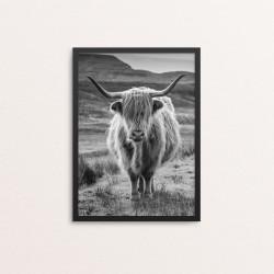 Plakat: Fotoart, Highland...