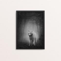 Plakat: Fotoart, White...