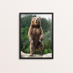 Plakat: Fotoart, Brown...