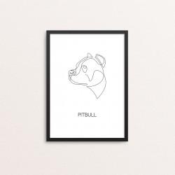 Plakat: 'PITBULL', one line