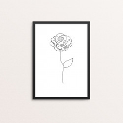 Plakat: Rose, one line
