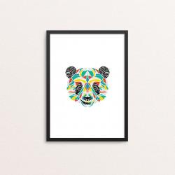 Plakat: Panda, multicolor