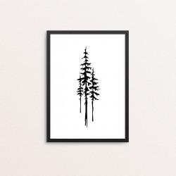 Plakat: Pine Trees