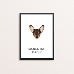Plakat: Russisk Toy Terrier